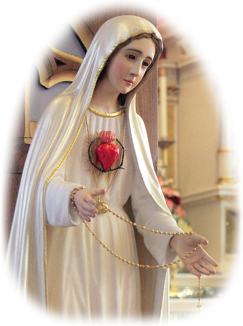 "Dear Apostle of the Immaculate Heart of Mary,  As the animator and Director of the Universal Living Rosary Association of Saint Philomena (ULRA), I write to wish you and your family a most happy Thanksgiving and to extend my gratitude for your most generous heart.  I am thankful this week to you personally for making it possible with your generous donations to continue the missionary work of our Foundress, the Venrable Pauline Jaricot.  As you spread the gospel to all corners of the globe you are following Jesus' command in Matthew 28:19 to ""Go, therefore, make disciples of all the nations."""