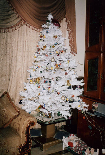 A Christmas Tree at the school.